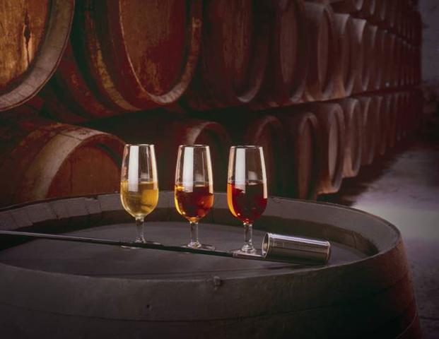 Potencial de aromas en los vinos de jerez, con multitud de maridajes
