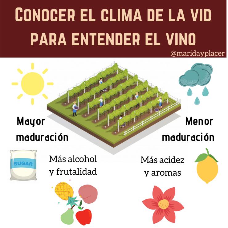 La vid y viñedo según el clima
